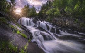 Картинка деревья, река, камни, скалы, водопад, Норвегия, каскад