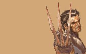 Картинка взгляд, фон, когти, Wolverine, X-Men, Marvel Comics, адамантий
