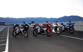Картинка мотоциклы, мото, Honda, moto, motorcycle, спортбайк