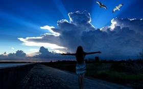 Обои небо, свобода, девушка, птицы, настроение