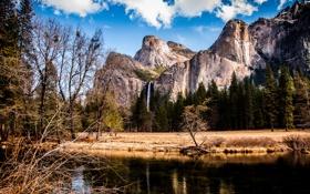 Картинка США, река, Йосе́митский национальный парк, Yosemite national park, вершины, берег, деревья