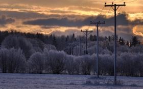 Картинка зима, поле, природа, утро, лэп