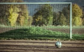 Обои спорт, мяч, ворота
