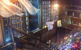 Картинка кот, цветы, лампа, Дождь, лестница, занавески