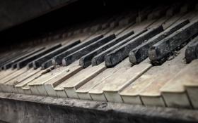 Картинка музыка, пианино, макро