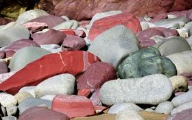 Картинка камни, берег, цвет, текстура