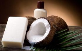Картинка стол, мыло, кокосы, бутылёк