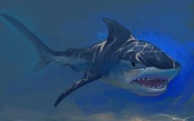 Обои солнечные лучи, под водой, рыба, пасть, арт, акула, хищник
