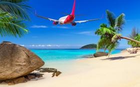 Обои море, пляж, тропики, Самолет, beach, sea, tropics
