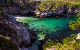Картинка море, камни, скалы, побережье, бухта, Калифорния, США