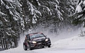 Обои Зима, Снег, Лес, Гонка, Фары, WRC, S2000