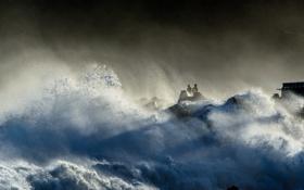 Обои море, тучи, шторм, люди, стихия, буря