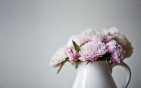 Картинка цветы, ваза, розовые, кувшин, пионы