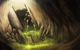 Картинка трава, жизнь, камни, растения, жидкость, существо, арт