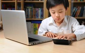 Обои boy, laptop, studying, calculator