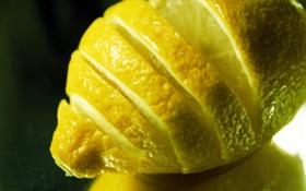 Картинка макро, лимон, фрукт, цитрус, lemon, macro, fruit