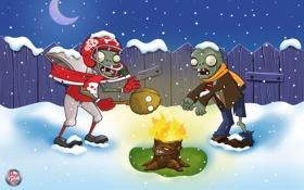 Обои зима, костер, Plants vs Zombies, зомби