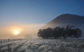 Картинка пейзаж, солнце, забор, туман, деревья, холм, иней