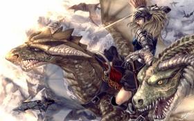 Обои девушка, оружие, драконы, меч, арт, шлем, всадники