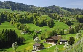 Картинка nature, деревья, природа., Switzerland, горы, Швейцария