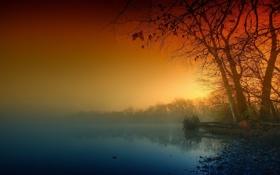 Картинка пейзаж, природа, туман, река, берег, утро