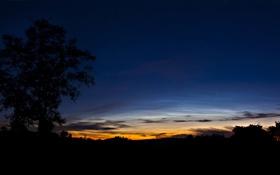 Картинка закат, дерево, силуэт, Ireland, Killygordon, Lifford, Co. Donegal