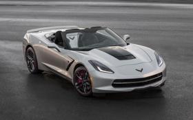 Обои Corvette, Chevrolet, суперкар, шевроле, корвет, Convertible, Stingray