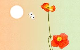 Обои стебельки, обои, солнце, маки, рисунок, птицы