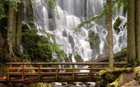 Обои деревья, мост, камни, гора, водапад