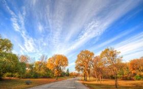 Обои дорога, осень, небо, листья, облака, деревья