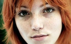 Картинка глаза, взгляд, волосы, портрет, рыжие, зелёные