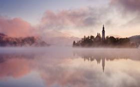 Обои остров, река, деревья, landscape beautiful, туман