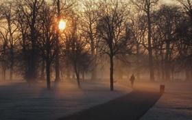 Картинка London, England, Hyde Park