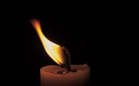 Обои макро, огонь, свеча