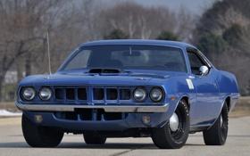 Обои 1971, мускул кар, muscle car, плимут, куда, plymouth, cuda