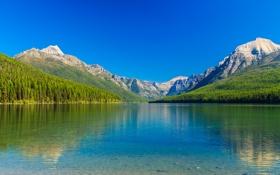 Обои лес, небо, деревья, горы, озеро, склон