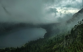 Картинка лес, облака, сопки, озеро, туман