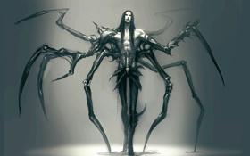 Картинка фон, монстр, арт, парень, anndr, kamoril, windside: necromance