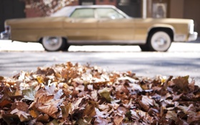 Картинка машина, осень, листья, макро, ретро, опавшие, расплывчатый фон