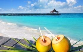 Обои море, пляж, лето, beach, sea, коктейли, paradise