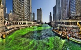 Обои небо, люди, здания, Чикаго, зеленая вода