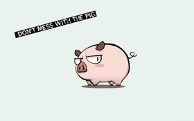 Картинка фон, свинка, розовая, свинья, поросёнок