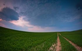 Картинка дорога, небо, трава, след