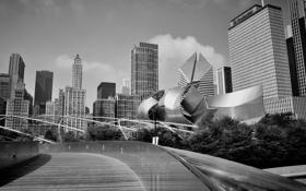 Обои city, небоскребы, черно белое, USA, америка, чикаго, Chicago