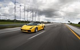 Обои дорога, жёлтый, разметка, столбы, скорость, gallardo, кабриолет