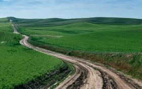 Обои Country Road, За холмами, Rolling Hills