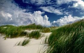 Обои песок, трава, облака, дюна
