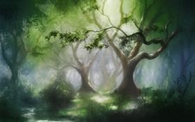 Обои лес, деревья, природа, ручей, арт