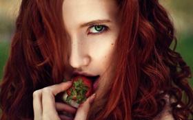 Картинка клубничка, губки, Strawberry, ягодка, Roman Filippov