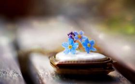 Обои цветок, макро, стиль, кулон, сердечко